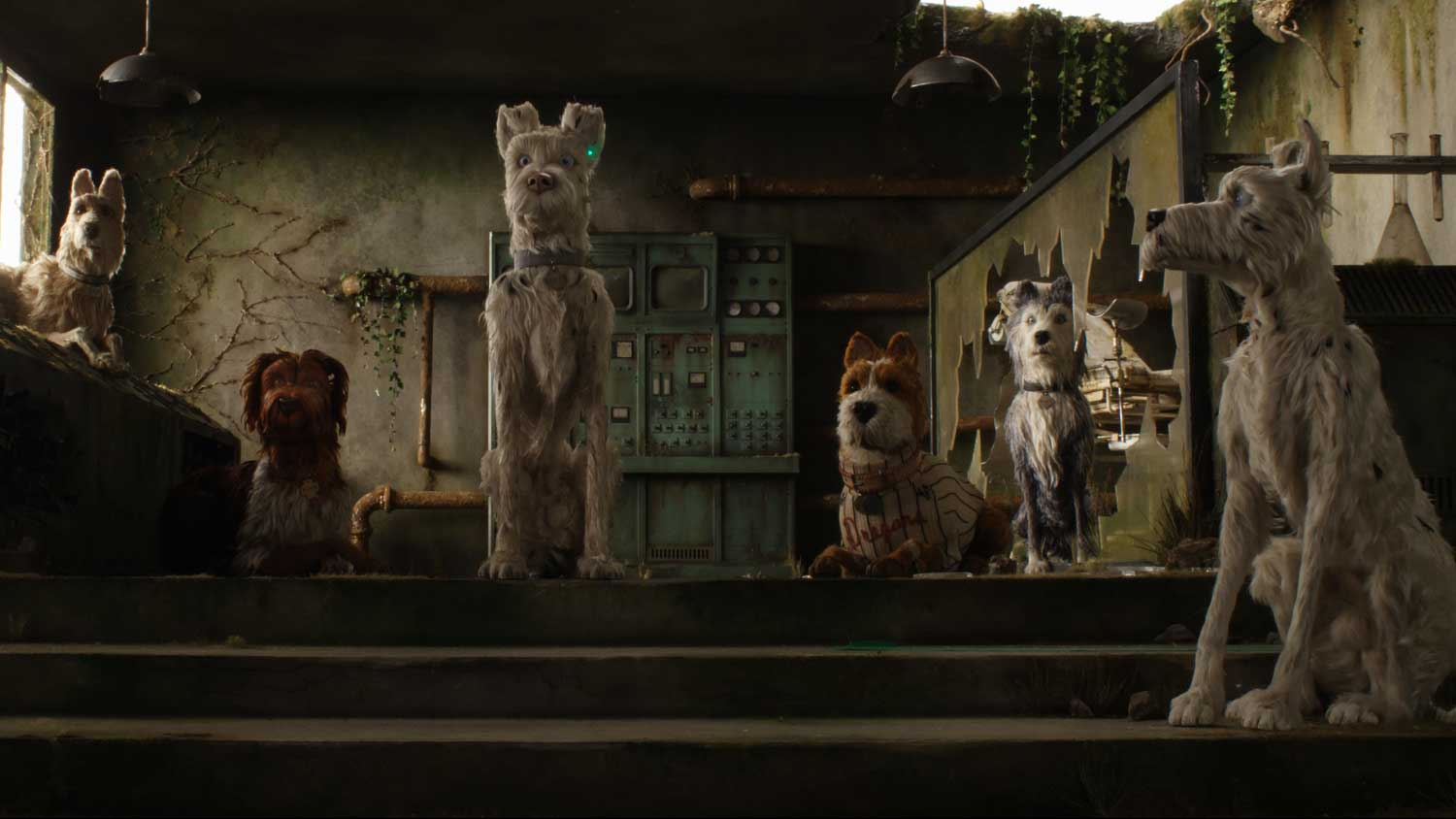 Isle Of Dogs Review - OC Movie Reviews - Movie Reviews, Movie News, Documentary Reviews, Short Films, Short Film Reviews, Trailers, Movie Trailers, Interviews, film reviews, film news, hollywood, indie films, documentaries