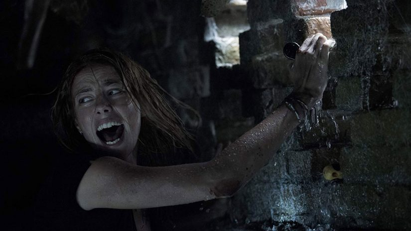 Crawl Review - OC Movie Reviews - Movie Reviews, Movie News, Documentary Reviews, Short Films, Short Film Reviews, Trailers, Movie Trailers, Interviews, film reviews, film news, hollywood, indie films, documentaries, TV shows