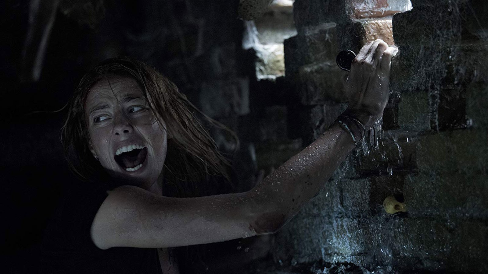 Crawl - The Alligators Are Coming For You! - OC Movie Reviews